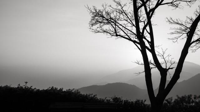 心靜看哪都是美景